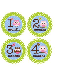 Baby Girl Monthly Onesie Stickers for New by BuddhaBellies on Etsy, $9.00