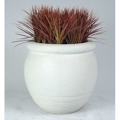 "Allied Molded Products Round Pot Planter Color: Gray, Size: 26"" H x 26"" W x 26"" D"