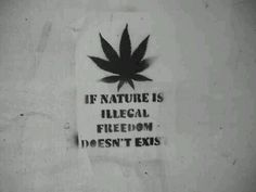 if nature is illegal, freedom doesnt exist
