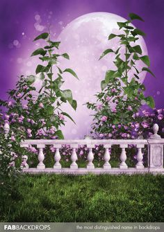 Magical Fairytale Prom Backdrop / Princess Background by FabDrops