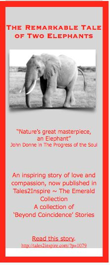 Shirley and Jenny, two elephants who showed us the meaning of true devotion, love and compassion. Get a FREE sampler of 6 winning Tales2Inspire stories at: http://form.jotform.us/form/41574113163144