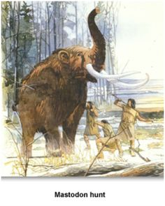 The Paleo-Indian did not use bows and arrows. The bow and arrow had not been invented yet.     Instead they used spears to kill their prey. For this reason, the stone weapons they used to kill animals are not called arrowheads.   Instead archaeologists call them spear points or projectile points.