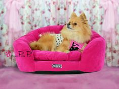 Hot Pink Velvet Round Couch Bed - For the Pampered Pooch!