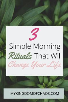 3 Simple Morning Rituals that Will Change Your Life. Spice up your morning routine. Entrepreneur, Drinking Lemon Water, How To Get Motivated, Morning Habits, Morning Ritual, Cheer Me Up, Getting Up Early, How To Wake Up Early, Take Care Of Yourself