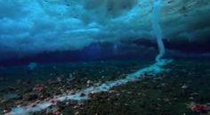 Dedo de Gelo