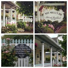 Miss Molly's Inn on Chincoteague, a charming bed and breakfast on Main Street where Marguerite Henry wrote Misty of Chincoteague in Marguerite Henry, Bed And Breakfast, Breakfast Ideas, Chincoteague Island, White Picket Fence, Main Street, Travel Destinations, Address Signs, Road Trip