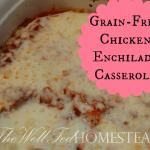 Grain-Free, GAPS Legal Red Enchilada Sauce | The Well Fed Homestead