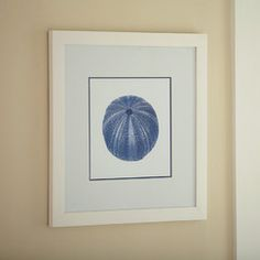 Sea Life Framed Print III