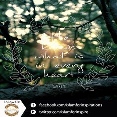 Al-Aleem - Surah Mulk. Qur'aan: 67:13  ||►Like ||►Share ||►Comment ||►Promote ||►Spread  #IslamicQuotes #Islamic #Allah #Aleem