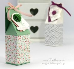Stampin' Up! Demonstrator Pootles - Easy Triangular Topped Box Tutorial 12 Deals of Christmas Pretty Packaging, Gift Packaging, Origami, Stampin Up Anleitung, Paper Crafts, Diy Crafts, 3d Paper, Creative Box, Cute Box