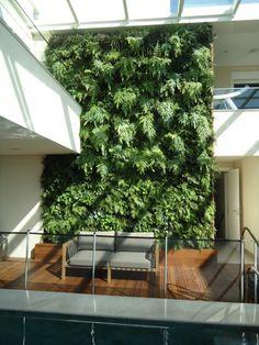QUADRO VIVO   Jardins Verticais e Paineis Verticais   11.3060.5060