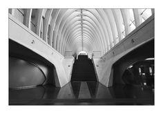 https://flic.kr/p/a34tkx | Cathedral | Treppenhaus im Bahnhof Lüttich/Liège Stairs in trainstation Liège, belgium