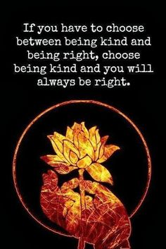 If you have to choose between being kind and being right choose being kind and you will always be right | Anonymous ART of Revolution