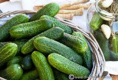 castraveti-murati-1 Pickles, Cucumber, Vegetables, Food, Essen, Vegetable Recipes, Meals, Pickle, Yemek