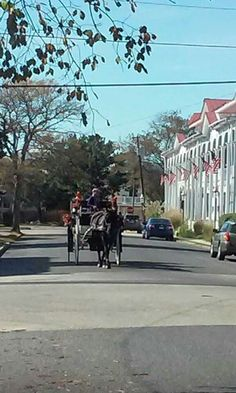 Its a lovely oct day in Cape May