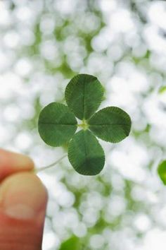"""No fear! How to Make Your Own Luck - """"Lucky people just try things..."""" via TIME"""