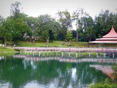 The distinctive zig-zag bridge and Performing Arts Pavilion at the reservoir, MacRtchie