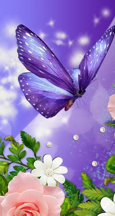 13 best butterfly wallpaper iphone images in 2016 Ombre Wallpaper Iphone, Purple Butterfly Wallpaper, Ombre Wallpapers, Iphone Wallpaper Quotes Love, Butterfly Background, Flowery Wallpaper, Flower Background Wallpaper, Wallpaper Iphone Disney, Cute Wallpaper Backgrounds
