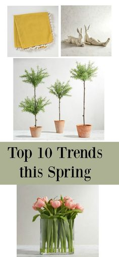 Top 10 Trends This Spring