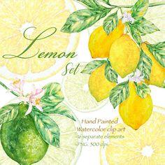 Lemon Clipart Green Leaves, Watercolor Fruit Wreath, Juicy Fresh Lime Slice, Tropical Clip Art, Healthy Citrus, Leaf and Flower Frame PNG