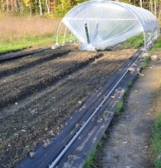 moveable hoophouse on pipe track