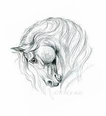 Resultado de imagem para лошадь