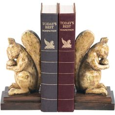 I pinned this Acorn Lover Bookend (Set of 2) from the Accents Under $75 event at Joss and Main!