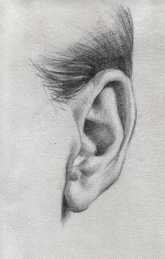 Pencil drawing of ear drawings Source by ndmrl Pencil Art Drawings, Realistic Drawings, Art Drawings Sketches, Pencil Sketching, Charcoal Drawings, Art Illustrations, Anatomy Sketches, Anatomy Art, Life Drawing