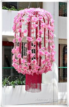 Chinese New Year Celebrations & Goodies