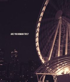 Divergent by Veronica Roth Divergent Plot Twist, Divergent Party, Divergent Fandom, Divergent Trilogy, Divergent Insurgent Allegiant, Divergent Quotes, Tris And Four, Fanart, Veronica Roth