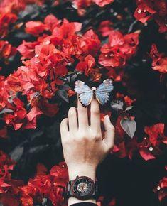 Bugün en güzel dilekleriniz gerçekleşsin 🌟 #vemotive