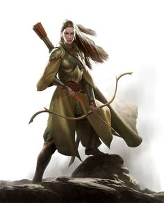 consul-agrippa: Elf Warfare Cover Art by wraithdt