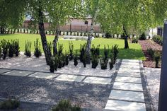Nowoczesny ogród z betonowymi murkami na Strzeszynie