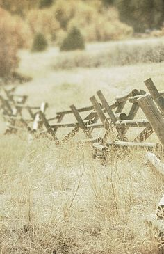 Country Fence - these are my absolute FAVORITE! Front Yard Fence, Farm Fence, Fence Art, Dog Fence, Pallet Fence, Fence Landscaping, Backyard Fences, Garden Fencing, Green Fence