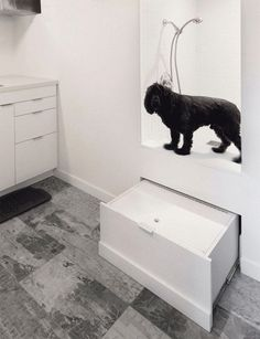 Dog wash in garage dog groo in this mudroom theres a custom built dog wash station that has a step solutioingenieria Gallery