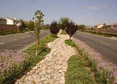 Decorative Stone Solutions ~ 1.800.699.1878 - Dry Streambed