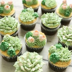 Succulents are simply one of the best plants. Dont you agree? #succulentcupcakes #succulents Fun Baking Recipes, Donut Recipes, Cupcake Recipes, Sweet Recipes, Dessert Recipes, Cupcake Ideas, Dessert Party, Party Desserts, Yummy Cupcakes