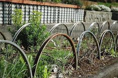 beautiful Garden Edging from Repurposed Materials  #Garden One of the most overlooked elements of garden design for the average DIY gardener is garden edging. It can be laborious to install, expensive, and ......