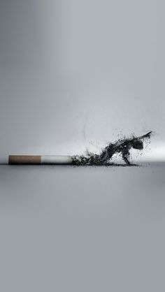 Smoking kills, stop encouraging people to smoke!  Is wrong! Instead encourage them to stay healthy! You are not being a good example of a healthy person should be.
