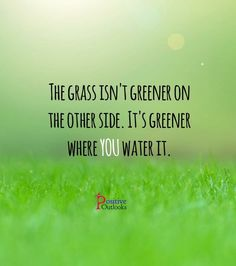 Grass is greener where you water it Words To Live By Quotes, Love Quotes, Inspirational Quotes, Motivational Quotes, Positive Outlook, Positive Thoughts, Positive Mind, Welcome Quotes, Special Quotes