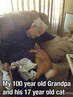 Moment de tendresse entre un homme de 100 ans et son chat de 17 ans.