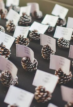 DIY escort card idea: Pinecones painted with snowy white tips | Brides.com