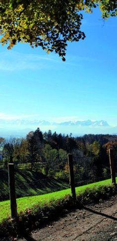Käse-Lehrpfad Hiking Trails, Austria, Yoga, Running, Mountains, Landscape, Nature, Travel, Outdoor