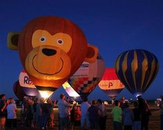 The Skys the Limit Balloon Spectacular in Gainesville, Tx - from Festivals.com