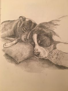 Heidi and Blu sketch