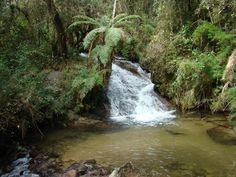 Parque Nacional dos Campos Gerais, Paraná