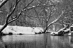 Valley Creek in Snow