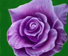 A purple rose! Anything's possible! #Anything'sPossible #BlueRoseProject