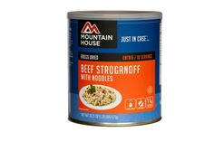 Mountain House Beef Stroganoff with Noodles *** To view further, visit now : Camping gear