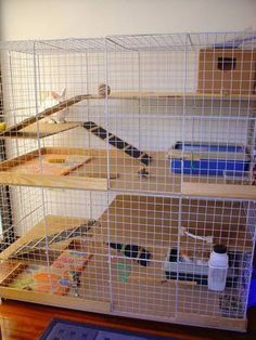 Diy Bunny Cage, Bunny Cages, Rabbit Cages, House Rabbit, Pet Rabbit, Dwarf Rabbit, Benny And Joon, C&c Cage, Chinchilla Cage